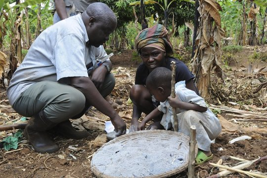 Nutritional Independence for 300 Rwandan Families