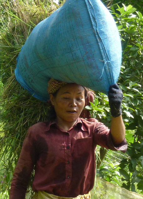 Empower HIV+ Women in Cambodia to Start a Business