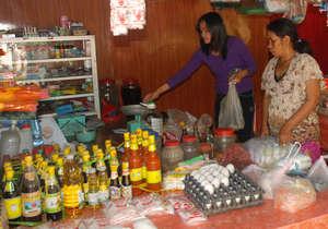 Thriving Village Store