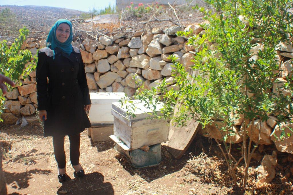 A beekeeping entrepreneur in Nablus-Asira