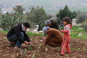 Family planting their thyme