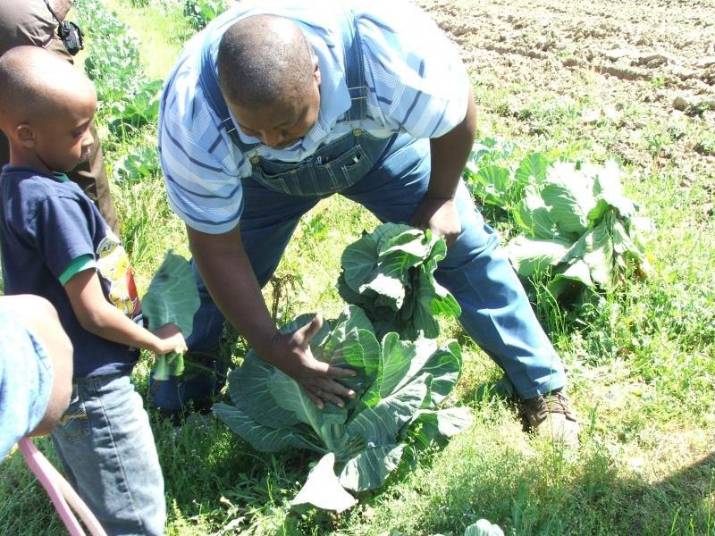Save Black Farmers