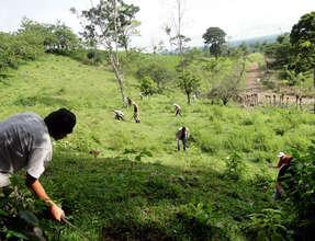 Maleku team cleaning Franklin Mojica's site
