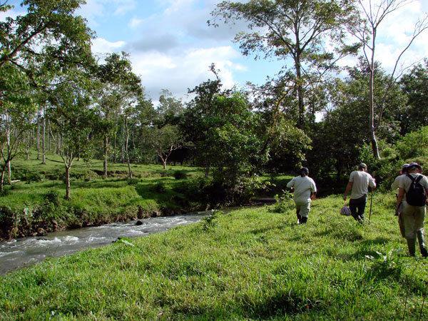 Rio Sol Bio Corridor, Maleku Reserve, Costa Rica