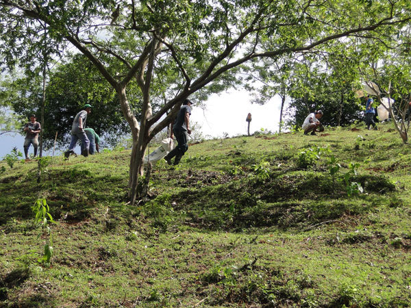 Planting at Franklin Mojica's farm