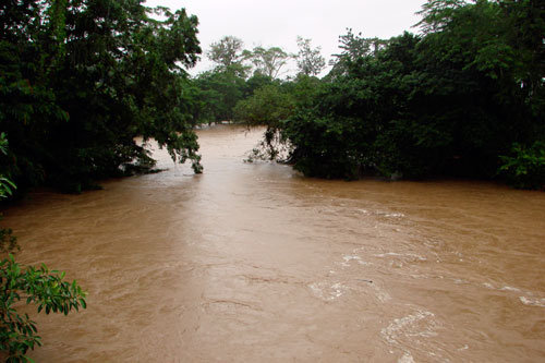 Sol River at flood stage. Forests prevent flooding