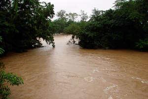 Sol River at flood stage. Forests prevent flooding