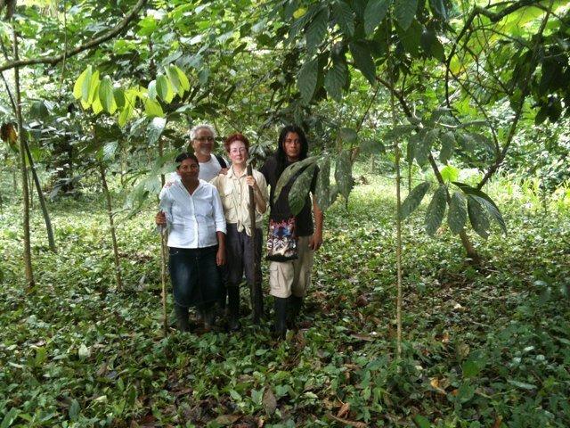 The present Rio Sol Bio Corridor FOREST!