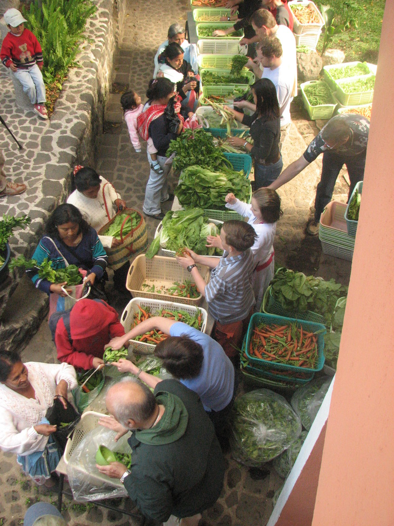 Vegetable Distribution
