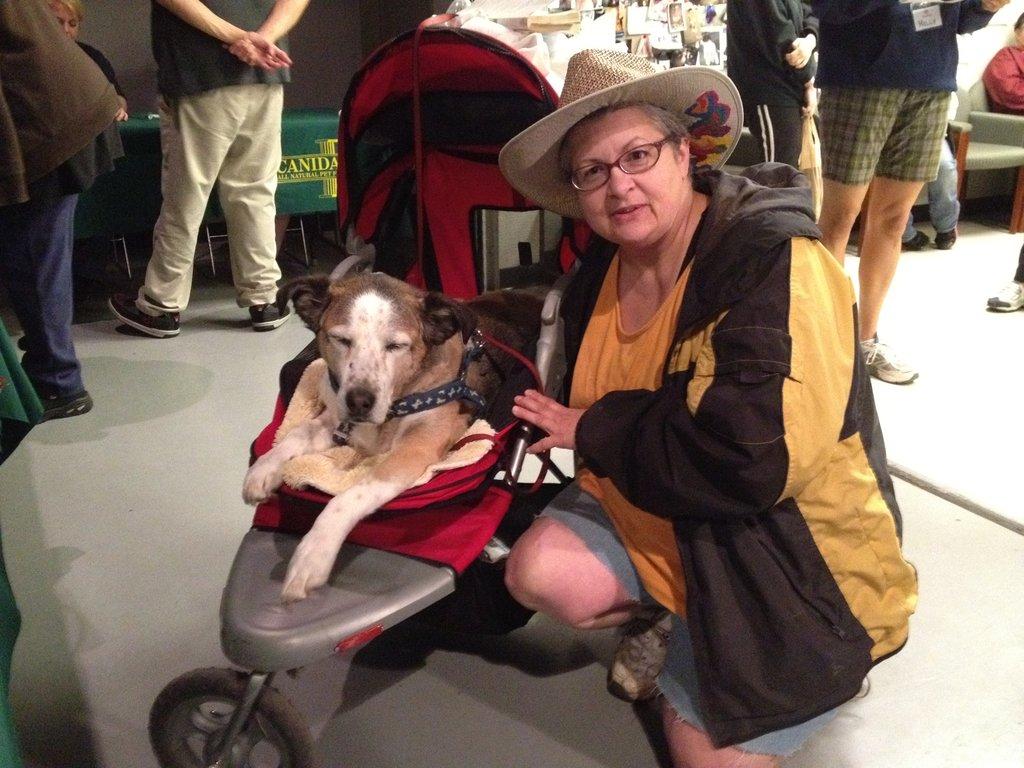 Teresa and her 14 year-old hound dog Sophia