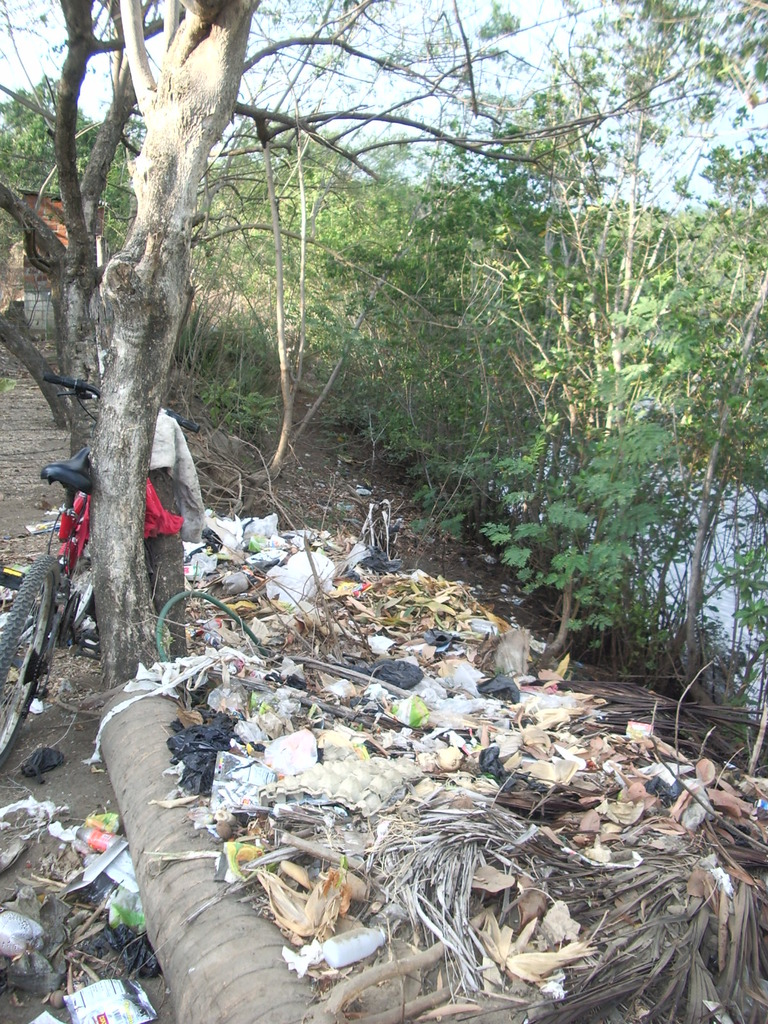 EWB HPP hopes to significantly improve sanitation
