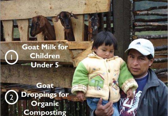 How Goats Help