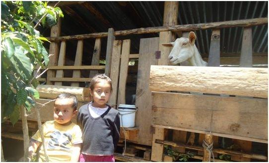 Claudia, Luiz and Muneca
