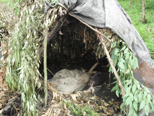 Pigmie woman asleep in her home