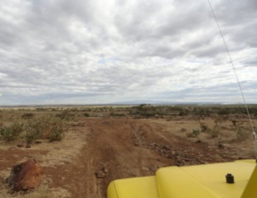 view from the yellow 4x4
