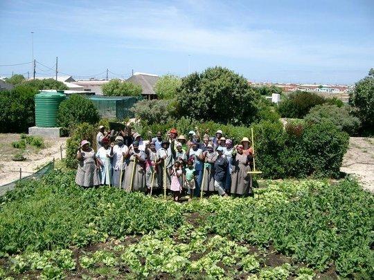 Siyazama Community Garden Association (SCAGA)