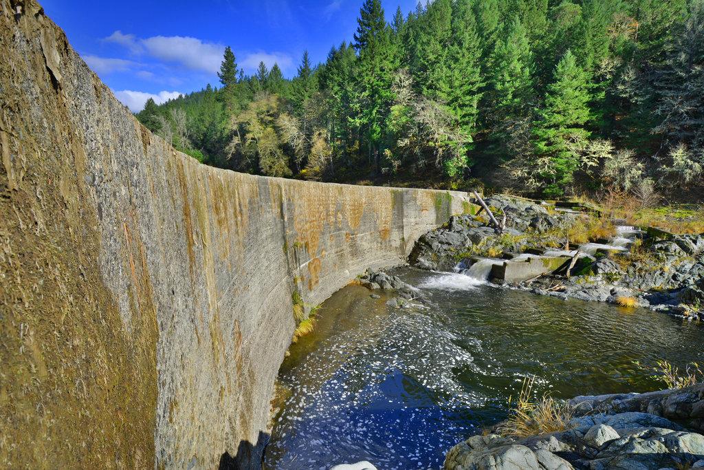 Fielder Dam Removal Project