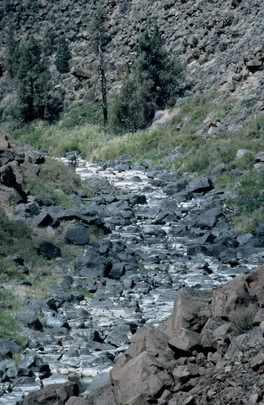 Dry Crooked River - About to be Restored