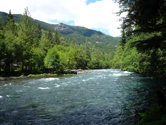 McKenzie River - Under threat
