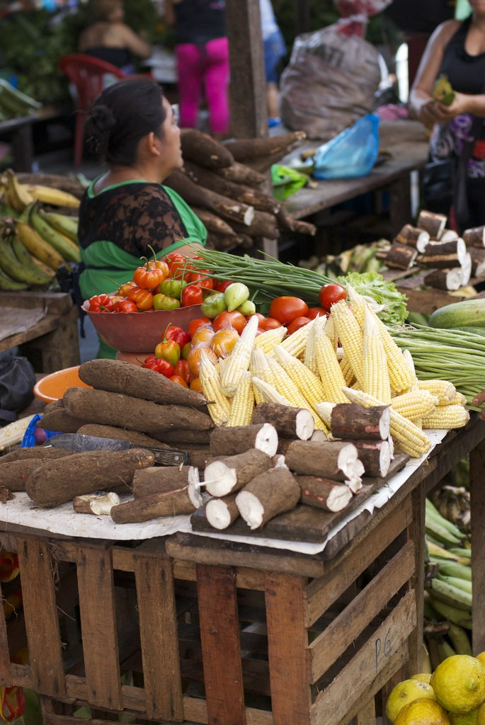Amazonian farm products can be grown with biochar
