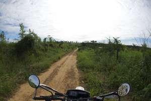 Fragile and degraded soils of Amazonia