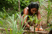 Turning carbon footprints into healthy soils