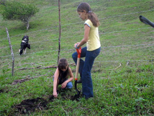 Girls planting trees in LRFF project