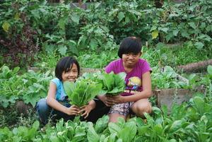 Rural gardening
