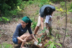 Youth doing tree planting activity
