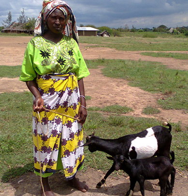 Beneficiary with her goats