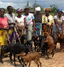 Community group with their goats