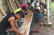 Bamboo Forest Development in Nicaragua-ASU/Cornell