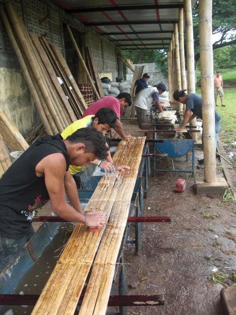 Bamboo Forest Development in Nicaragua-ASU/Cornell