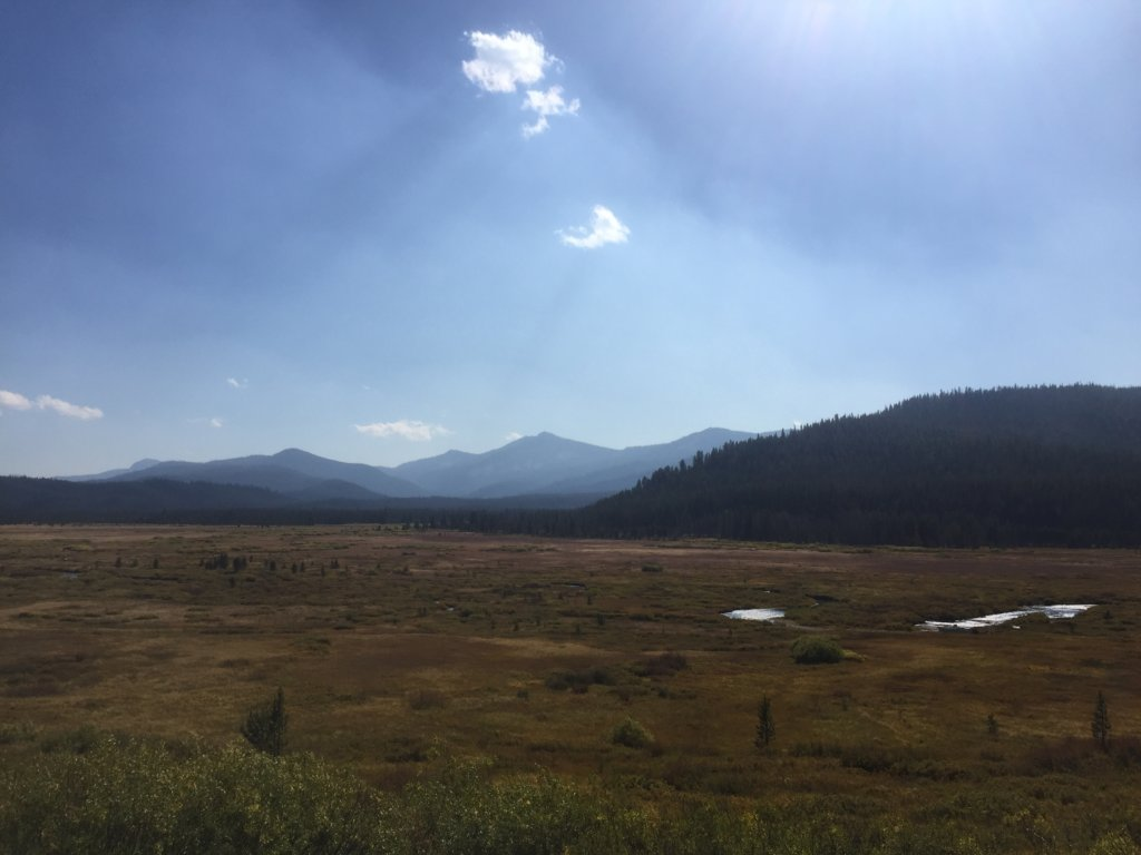 The Cape Horn allotment in the Salmon Challis NF