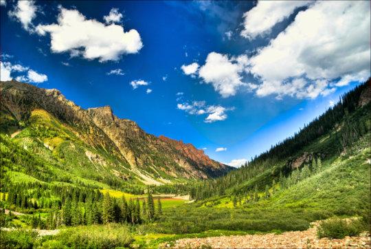 High Alpine Habitat in the Allotment