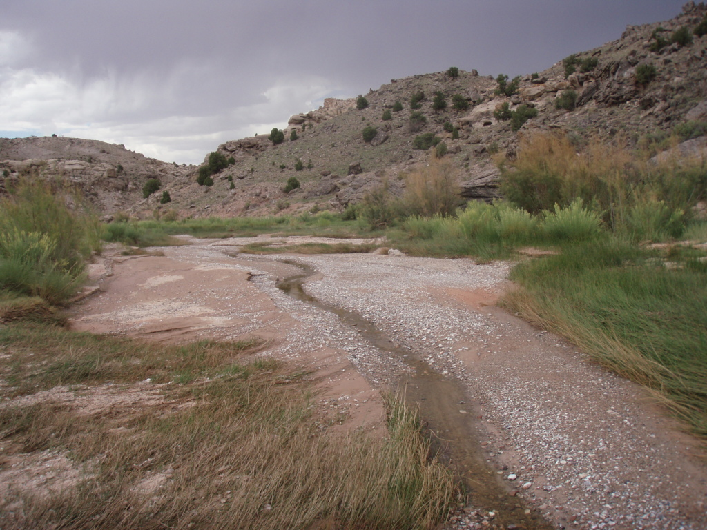 Ackland Spring in Capitol Reef
