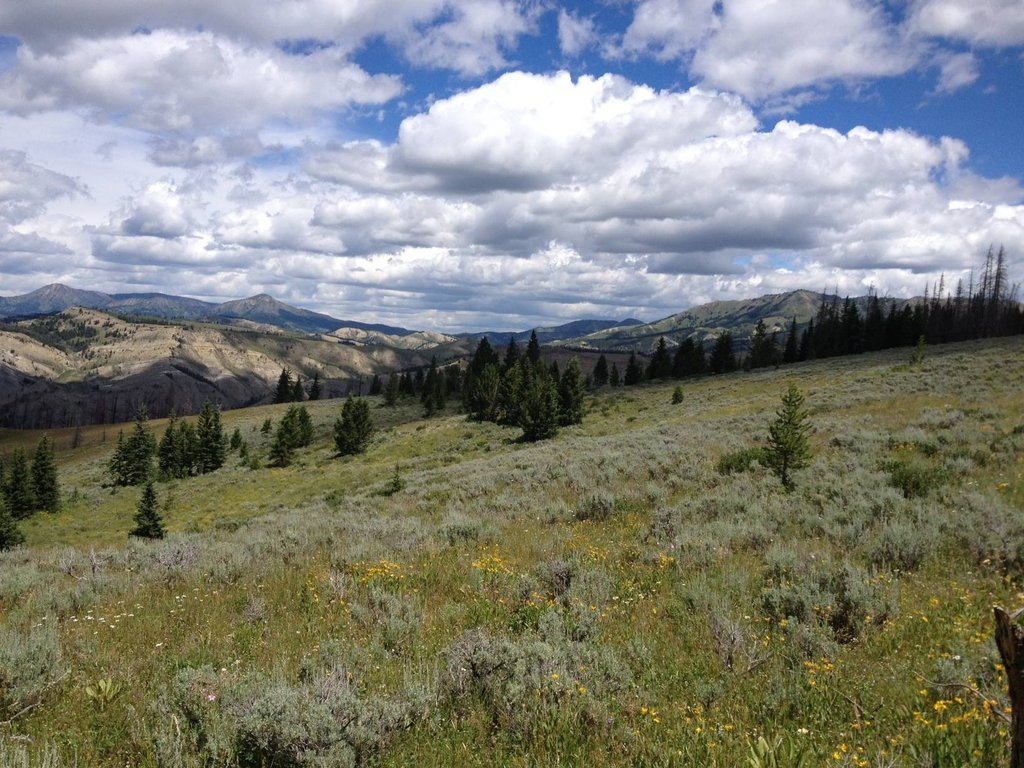 The Upper Gros Ventre Retirement N. of Jackson, WY