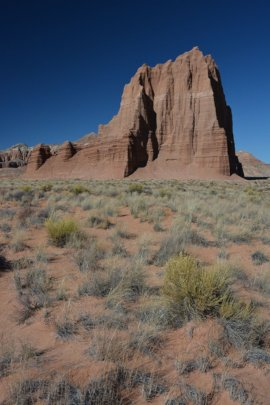 Capitol Reef's Cathedral District / Hartnet