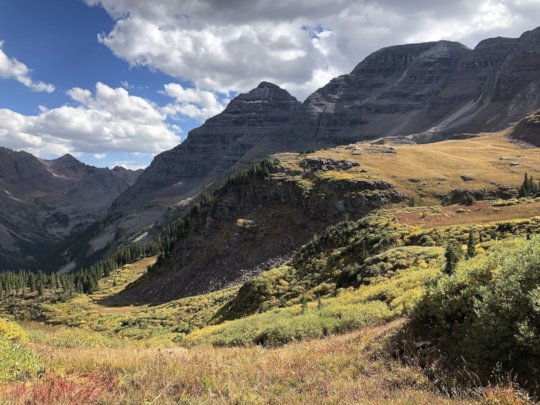 Upper Crystal River Allotment Alpine Meadows