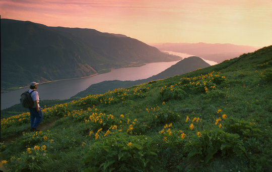 Friends of the Columbia Gorge - Give Green