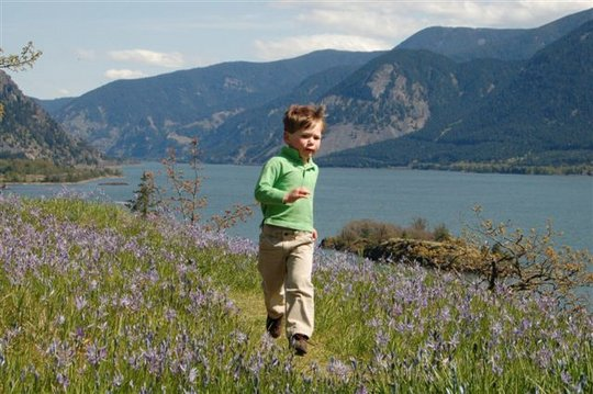 Preserve the Wonders of the Columbia Gorge