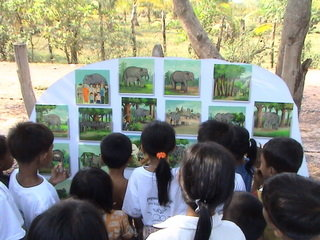 Learning About Elephants at PTWRC