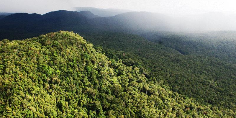 Southern Cardamom Mountains, Cambodia