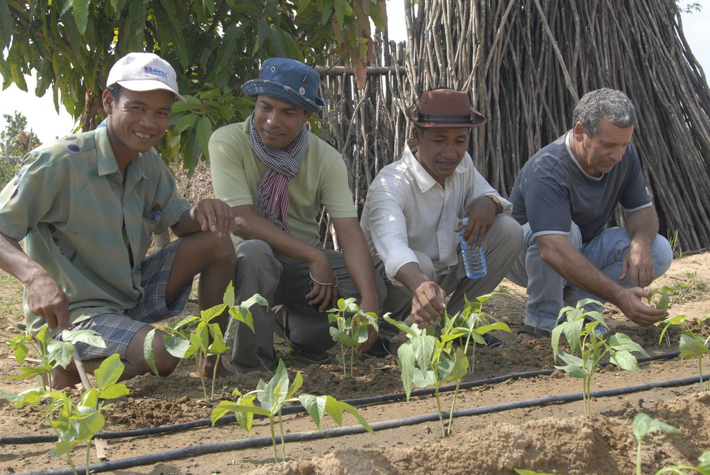 Empower Cambodian Communities to Protect Forests