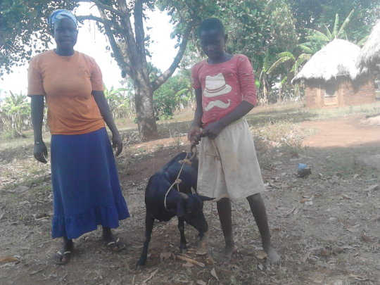 Evaline and the Aunt together with their goat