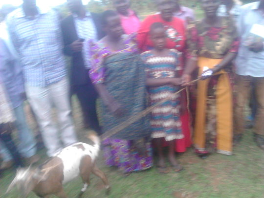 Another beneficiary given a goat