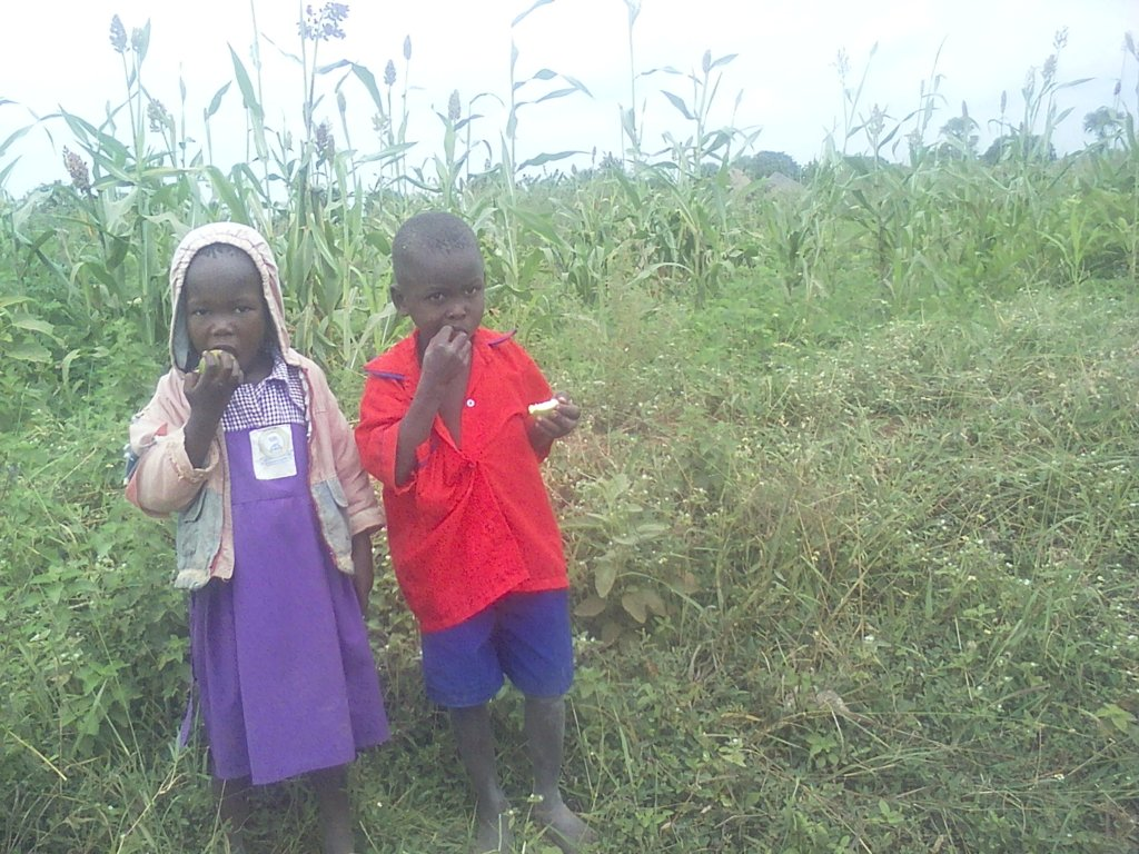 OUR ORPHANS FROM SCHOOL