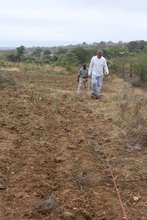 Measuring the Land for Building Placement