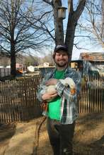 A volunteer bonds with one of CWR's resident ducks