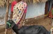 Buy A Goat For A Family of Visually Challenged